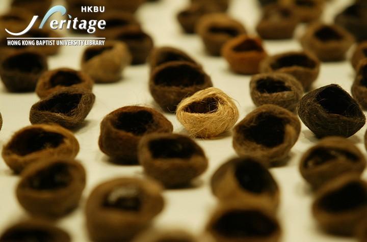 HKBU Heritage : 記憶未來