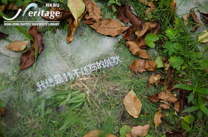 HKBU Heritage : 透明的回憶