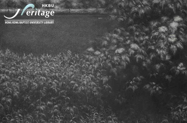 HKBU Heritage : 徘徊